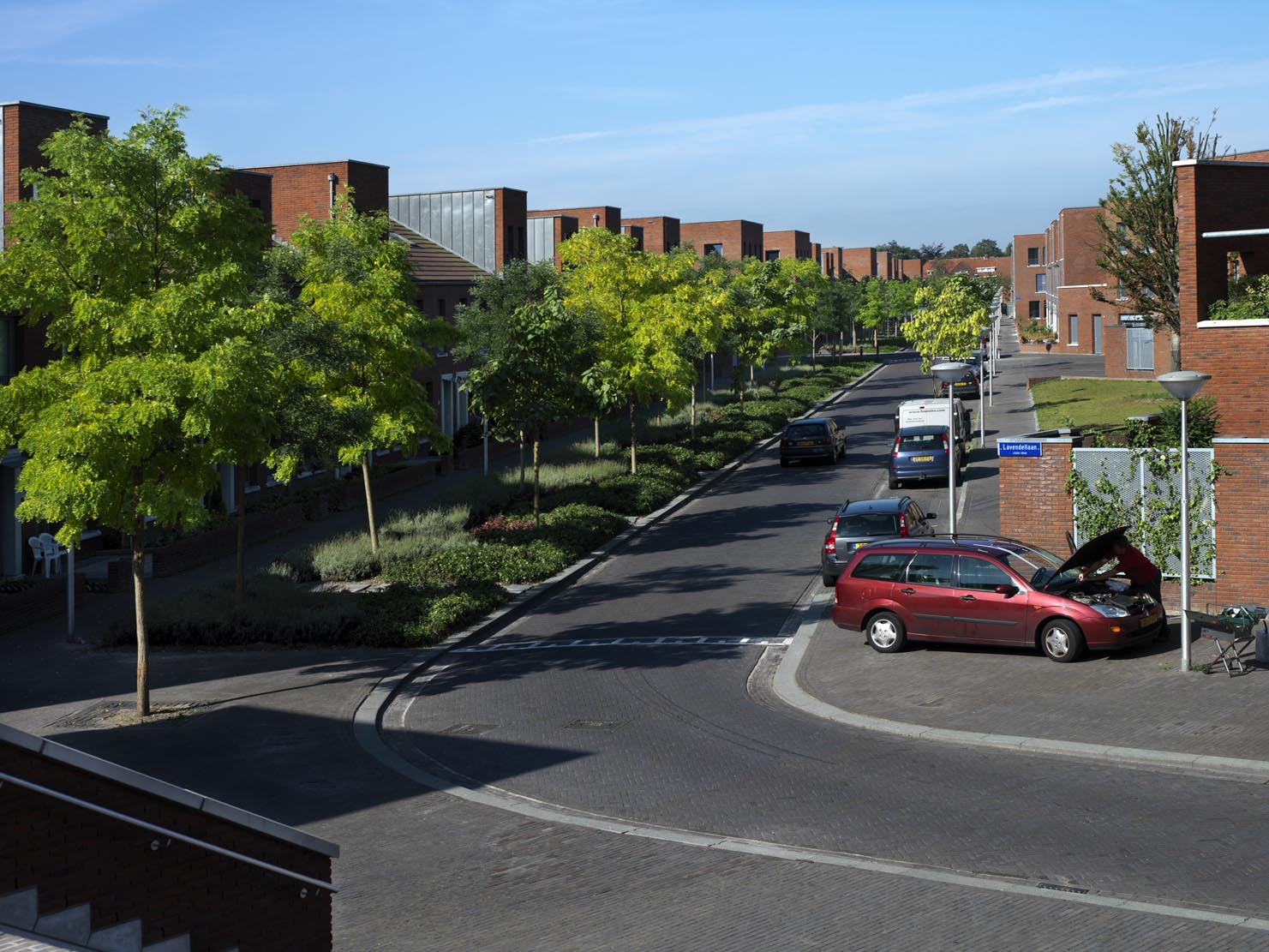 Kruidenbuurt Eindhoven rondlopende straat met bomen